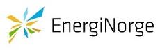 energi norge